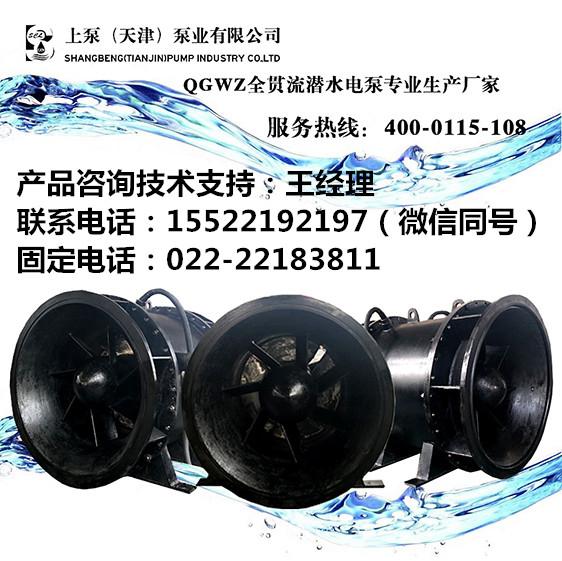 安徽宁国全贯流潜水泵
