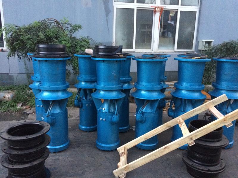 雨辰泵业大流量潜水轴流泵
