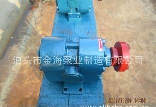 渣油泵 细微颗粒泵 ZYD合金钢外润滑齿轮泵