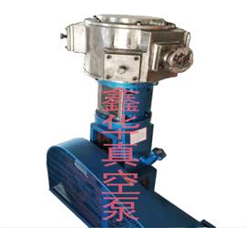 不锈钢无油立式真空泵WLW