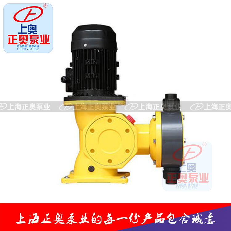 DJ-D型机械驱动隔膜式计量泵
