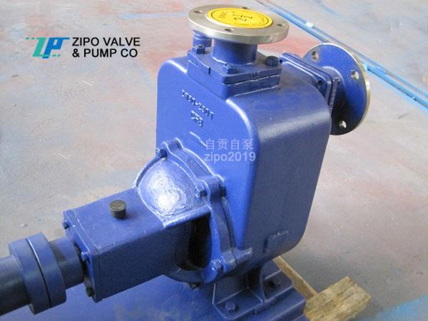 自贡自泵ZZX及ZZW无需二次灌水无堵塞卧式自吸泵铸铁电动排污泵