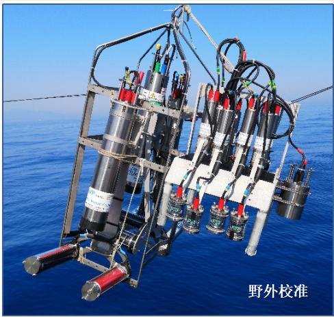 法国HYDROPTIC公司UVP6-HF水下颗粒物和浮游动物图像原位采集系统