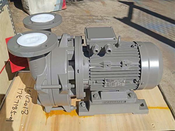 瑞士ABS真空泵 水环式 铸铁不锈钢材质