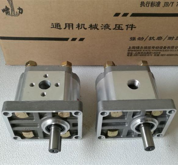 CBN-F306LPR 齿轮泵 平键右旋螺纹油口