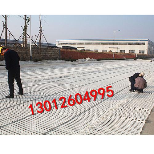 煤矿假顶网,160MS塑料网假顶带