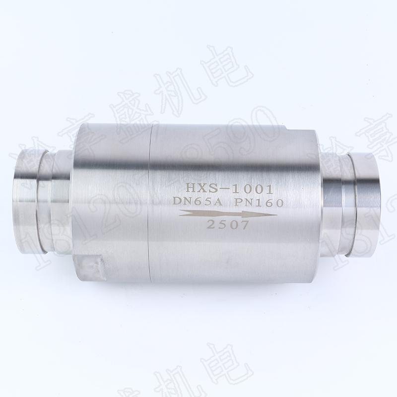 hxs1001高压大口径止回阀