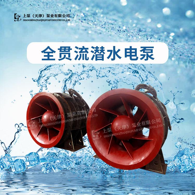 广东的全贯流水泵是上泵(天津)生产的