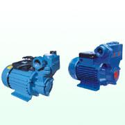 ZB/WZ型自吸泵系列