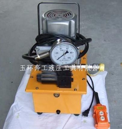 超高压电动泵浦ZCB-700B