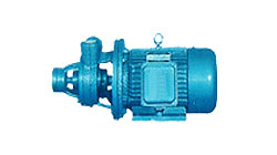 石家庄旋涡泵-1W2.4-10